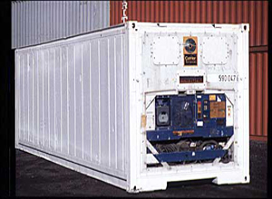 Tampa 20ft Flat Rack shipping container